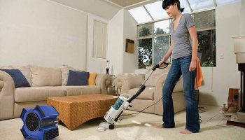 Top 11 Best Carpet Dryers In 2019