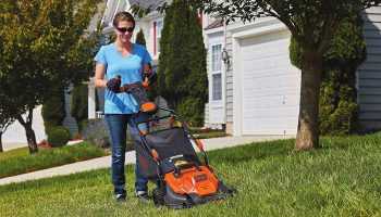 11 Best Push Mowers In 2021