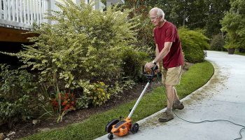 11 Best Lawn Edgers In 2021