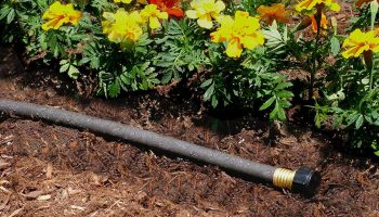 Top 15 Best Soaker Hoses In 2020