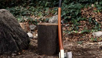 Top 11 Best Axes For Splitting Wood In 2020