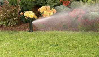 Top 12 Best Sprinkler Heads for Lawns and Gardens