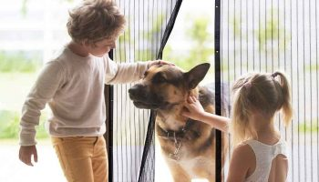 Top 11 Best Magnetic Screen Doors In 2020