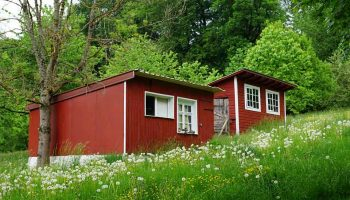 Can You Put A Tiny House In Your Backyard?