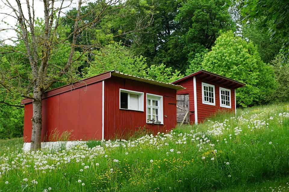 Put A Tiny House In Your Backyard